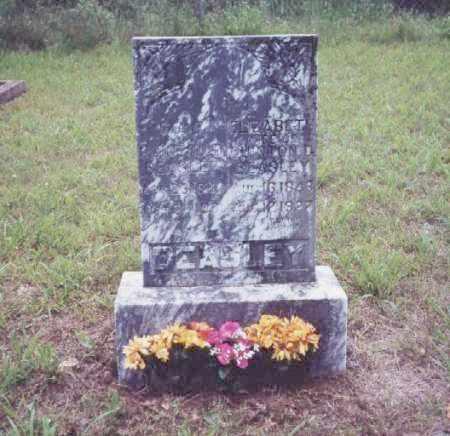 SKAGGS BEASLEY, ELIZABETH - Johnson County, Arkansas | ELIZABETH SKAGGS BEASLEY - Arkansas Gravestone Photos