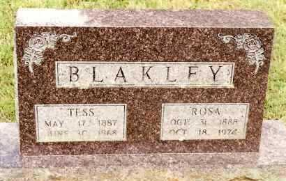 BLAKLEY, TESS - Johnson County, Arkansas | TESS BLAKLEY - Arkansas Gravestone Photos