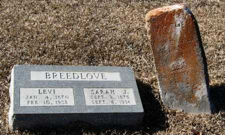 BREEDLOVE, SARAH J - Johnson County, Arkansas | SARAH J BREEDLOVE - Arkansas Gravestone Photos