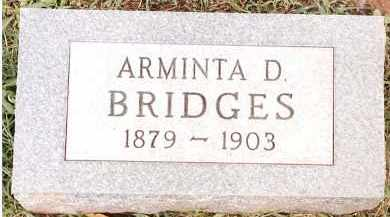 BRIDGES, ARMINTA D - Johnson County, Arkansas | ARMINTA D BRIDGES - Arkansas Gravestone Photos