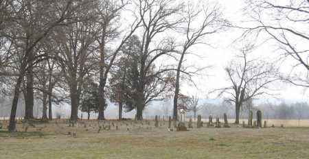 *BROWN CEMETERY OVERVIEW,  - Johnson County, Arkansas |  *BROWN CEMETERY OVERVIEW - Arkansas Gravestone Photos