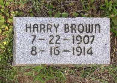 BROWN, HARRY - Johnson County, Arkansas | HARRY BROWN - Arkansas Gravestone Photos