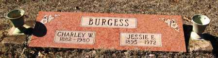 BURGESS, JESSIE E - Johnson County, Arkansas | JESSIE E BURGESS - Arkansas Gravestone Photos