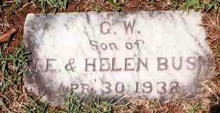 BUSH, G  W - Johnson County, Arkansas | G  W BUSH - Arkansas Gravestone Photos
