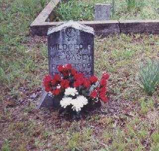 CASEY, MILDRED ROSETTA - Johnson County, Arkansas | MILDRED ROSETTA CASEY - Arkansas Gravestone Photos
