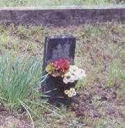 CASEY, PAUL - Johnson County, Arkansas | PAUL CASEY - Arkansas Gravestone Photos