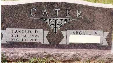 CATER  (VETERAN WWII), HAROLD D. - Johnson County, Arkansas | HAROLD D. CATER  (VETERAN WWII) - Arkansas Gravestone Photos