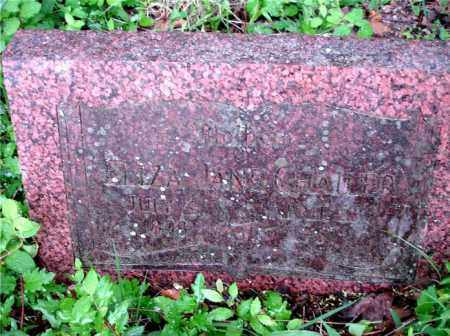 CHAILER, ELIZA JANE - Johnson County, Arkansas | ELIZA JANE CHAILER - Arkansas Gravestone Photos