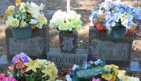 COOPER, ROXIE E - Johnson County, Arkansas | ROXIE E COOPER - Arkansas Gravestone Photos
