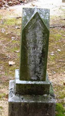 COWELL, CHARLES - Johnson County, Arkansas | CHARLES COWELL - Arkansas Gravestone Photos