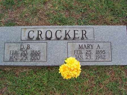 CROCKER, MARY ANN - Johnson County, Arkansas | MARY ANN CROCKER - Arkansas Gravestone Photos