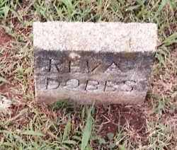 DOBBS, REVA - Johnson County, Arkansas | REVA DOBBS - Arkansas Gravestone Photos