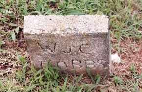 DOBBS, W  J  C - Johnson County, Arkansas | W  J  C DOBBS - Arkansas Gravestone Photos