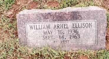 ELLISON, WILLIAM ARNEL - Johnson County, Arkansas | WILLIAM ARNEL ELLISON - Arkansas Gravestone Photos