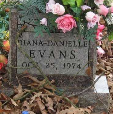 EVANS, DIANA DANIELLE - Johnson County, Arkansas | DIANA DANIELLE EVANS - Arkansas Gravestone Photos