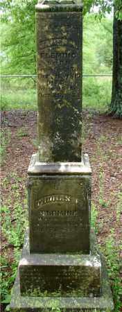 FLEMING, JAMES M. - Johnson County, Arkansas | JAMES M. FLEMING - Arkansas Gravestone Photos