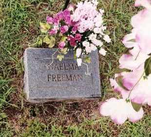 FREEMAN, NAELMA - Johnson County, Arkansas | NAELMA FREEMAN - Arkansas Gravestone Photos