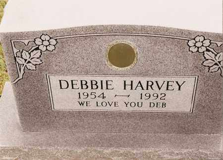 HARVEY, DEBBIE - Johnson County, Arkansas | DEBBIE HARVEY - Arkansas Gravestone Photos