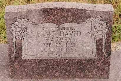 HARVEY, ELMO DAVID - Johnson County, Arkansas | ELMO DAVID HARVEY - Arkansas Gravestone Photos
