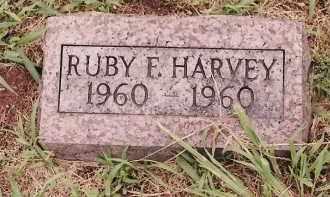 HARVEY, RUBY F - Johnson County, Arkansas | RUBY F HARVEY - Arkansas Gravestone Photos