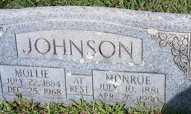 "JOHNSON, MARY ELIZABETH ""MOLLIE"" - Johnson County, Arkansas 