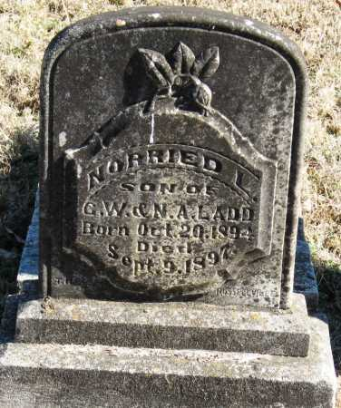 LADD, NORRIED L - Johnson County, Arkansas | NORRIED L LADD - Arkansas Gravestone Photos
