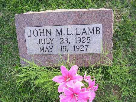 LAMB, JOHN M L - Johnson County, Arkansas | JOHN M L LAMB - Arkansas Gravestone Photos
