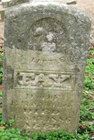 LEE, FAY - Johnson County, Arkansas | FAY LEE - Arkansas Gravestone Photos
