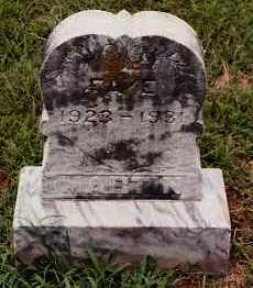 MARTIN, FAYE - Johnson County, Arkansas | FAYE MARTIN - Arkansas Gravestone Photos
