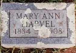 MARVEL, MARY ANN - Johnson County, Arkansas | MARY ANN MARVEL - Arkansas Gravestone Photos