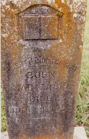 MONTGOMERY, ROBERT D. - Johnson County, Arkansas | ROBERT D. MONTGOMERY - Arkansas Gravestone Photos