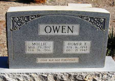 OWEN, MOLLIE - Johnson County, Arkansas | MOLLIE OWEN - Arkansas Gravestone Photos