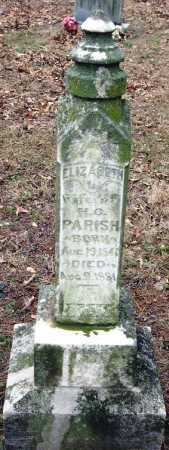 PARISH, ELIZABETH - Johnson County, Arkansas | ELIZABETH PARISH - Arkansas Gravestone Photos