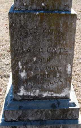PATE, JAMES MONRE - Johnson County, Arkansas | JAMES MONRE PATE - Arkansas Gravestone Photos