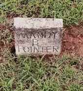 POINTER, MANDY B. - Johnson County, Arkansas | MANDY B. POINTER - Arkansas Gravestone Photos