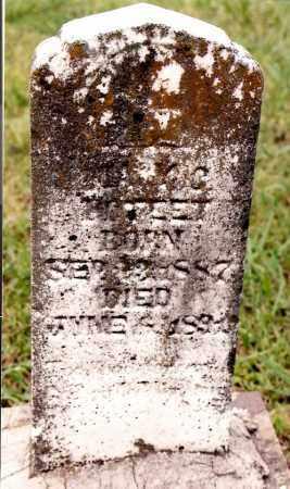 POTEET, MARY C. - Johnson County, Arkansas | MARY C. POTEET - Arkansas Gravestone Photos