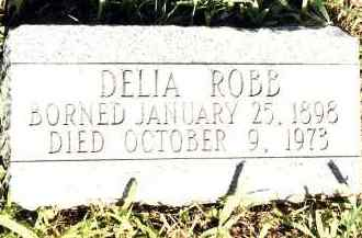CURTIS ROBB, DELIA - Johnson County, Arkansas | DELIA CURTIS ROBB - Arkansas Gravestone Photos