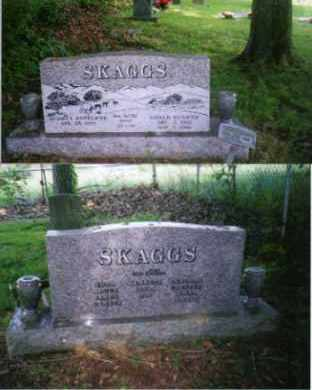 SKAGGS, GOALD - Johnson County, Arkansas | GOALD SKAGGS - Arkansas Gravestone Photos
