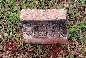 WALKER, CHESTER - Johnson County, Arkansas | CHESTER WALKER - Arkansas Gravestone Photos