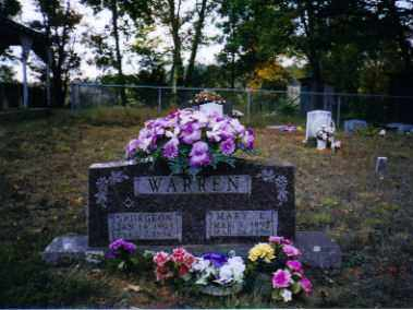 STONE WARREN, MARY - Johnson County, Arkansas | MARY STONE WARREN - Arkansas Gravestone Photos