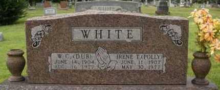 WHITE, W. C. (DUB) - Johnson County, Arkansas | W. C. (DUB) WHITE - Arkansas Gravestone Photos