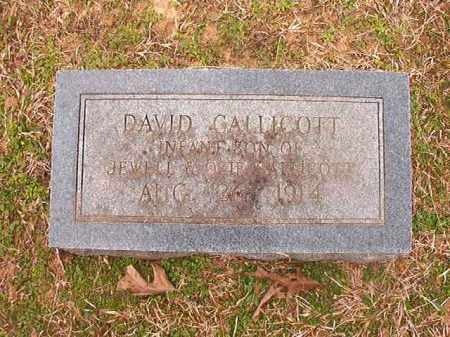 CALLICOTT, DAVID - Lafayette County, Arkansas | DAVID CALLICOTT - Arkansas Gravestone Photos