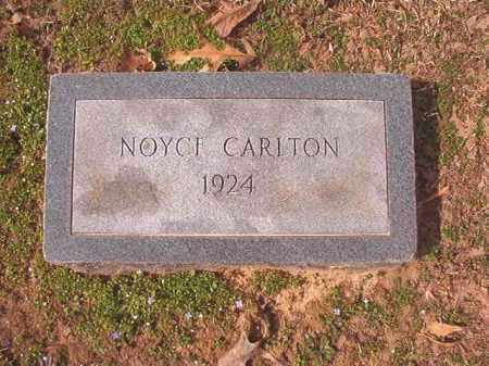 CARLTON, NOYCE - Lafayette County, Arkansas | NOYCE CARLTON - Arkansas Gravestone Photos