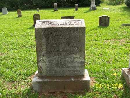 SEVIER DISMUKES, ADILE - Lafayette County, Arkansas | ADILE SEVIER DISMUKES - Arkansas Gravestone Photos