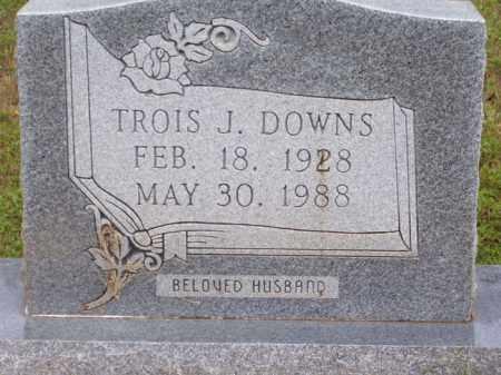 DOWNS, TROIS J - Lafayette County, Arkansas | TROIS J DOWNS - Arkansas Gravestone Photos