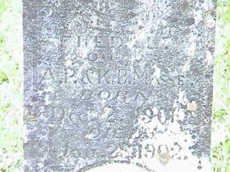 MASSEY, FRED L. (CLOSE UP) - Lafayette County, Arkansas | FRED L. (CLOSE UP) MASSEY - Arkansas Gravestone Photos