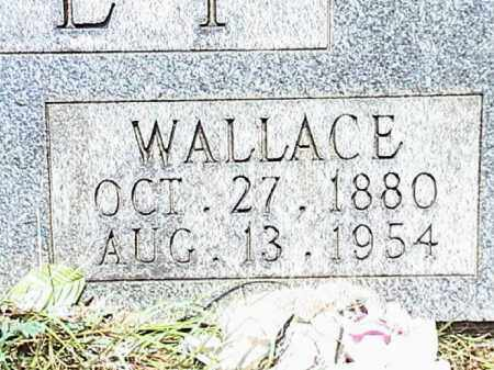 MASSEY, WALLACE - Lafayette County, Arkansas | WALLACE MASSEY - Arkansas Gravestone Photos