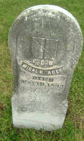 AGEE, MICAL H. - Lawrence County, Arkansas | MICAL H. AGEE - Arkansas Gravestone Photos