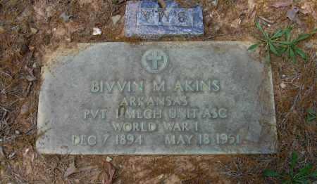 AKINS (VETERAN WWI), BIVVIN M - Lawrence County, Arkansas | BIVVIN M AKINS (VETERAN WWI) - Arkansas Gravestone Photos