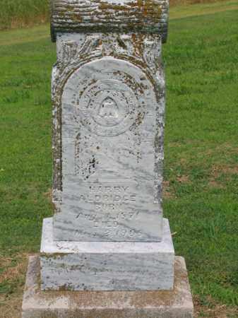 ALDRIDGE, HARRY - Lawrence County, Arkansas | HARRY ALDRIDGE - Arkansas Gravestone Photos